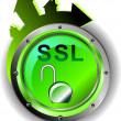 SSL - Security — Stock Photo