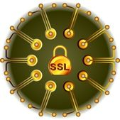 SSL - Security gold — Vettoriale Stock