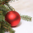 Christmas decoration — Stock Photo #8478261