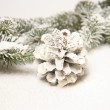 Christmas decoration — Stock Photo #8478408