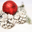 Christmas decoration — Stock Photo #8478431