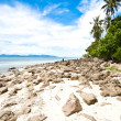 Samui Island — Stock Photo