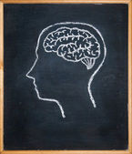 Drawing chalk board of inside head — Stock Photo