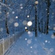 Alley in a park covered with snow and couple in walking in winter park in s — Stock Photo