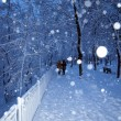 Alley in a park covered with snow and couple in walking — Stock Photo