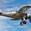 Stock Photo: Gloster Gladiator biplane