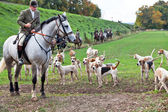 Hunting dogs and the hunt — Stock Photo