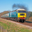 Norfolk diesel trips — Stock Photo