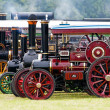 Finale - line up of steam traction engines - Stock Photo