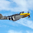 Stock Photo: P51 Mustang aerial display