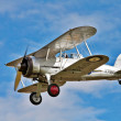 Stock Photo: Gloster Gladiator aerobatics show