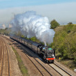Stock Photo: Steam special trips