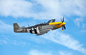 P51 Mustang aerial display — Stock Photo