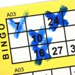 Bingo Card Close up - Stock Photo