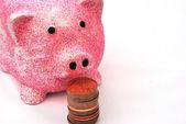 Piggy bank for money — Stock Photo