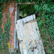 Leaning old door — Stock Photo