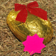 Easter egg with Bow — Stock Photo