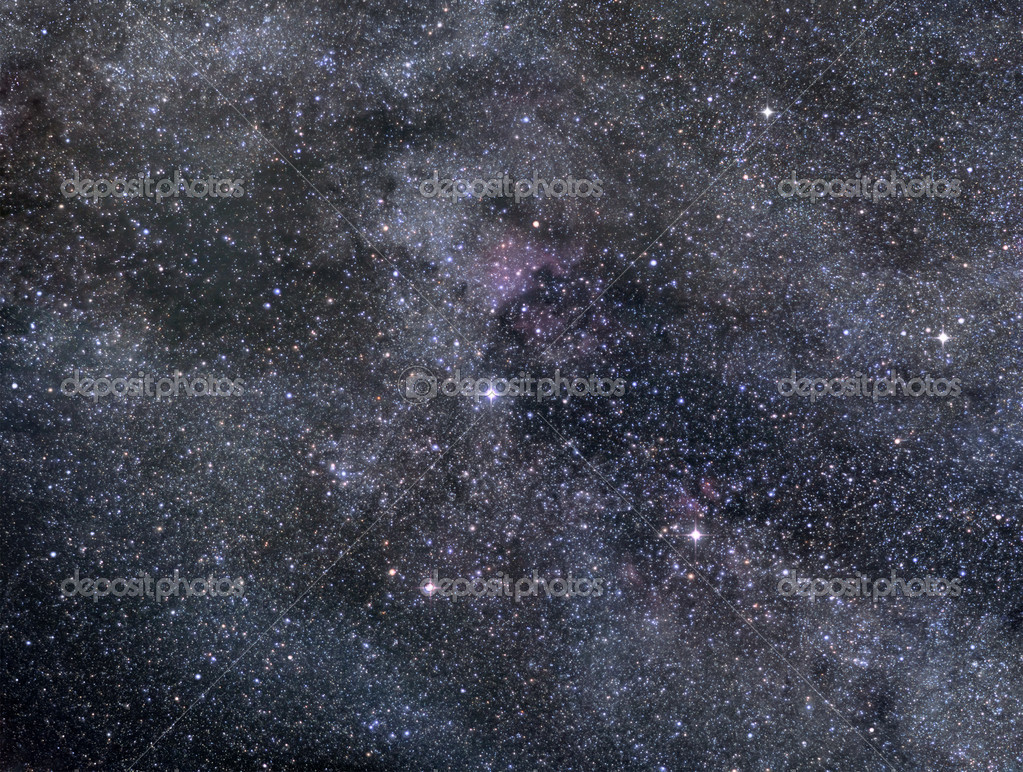 Astronomical image of rich star field in Cygnus constellation  Zdjcie stockowe #8532432