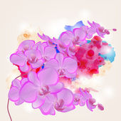 Orchid branch on a grunge watercolors background — Vector de stock