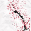 Cherry blossom branch - Stock Vector