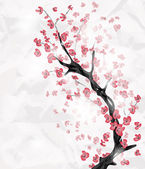 Cherry blossom branch — Stock Vector