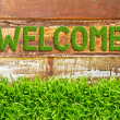 Green grass welcome word on wood background — Foto Stock