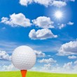 Golf ball and tee on green grass — Stock Photo