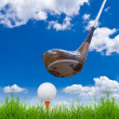 Golf ball and driver on green grass — Stock Photo #8028860