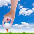 Hand put golf ball on tee — Stock Photo