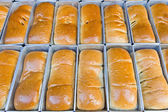Row of bread in metal box — Stock Photo