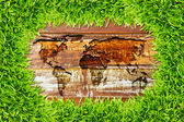 Green grass and world map on wood texture — Stock Photo