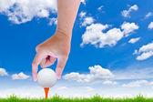 Mão colocou a bola de golfe no tee — Fotografia Stock