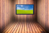 Wide screen television in wooden room — Стоковое фото