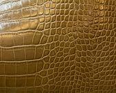 Crocodile skin texture — Foto Stock