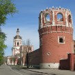 Moscow. The Tower and The Gate Church the Donskoy Monastery. — Stock Photo