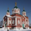 Russia, Kolomna. The Cathedral of Holy Cross — Stock Photo #9621780