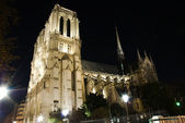Katedra notre dame w nocy — Zdjęcie stockowe