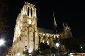 Notre dame kathedrale bei nacht — Stockfoto