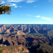 Grand canyon — Stock Photo #10032476