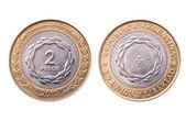 Argentina, moneda aniversario bicentenario 2010, trazado de recorte. — Foto de Stock