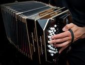 Playing traditional bandoneon. — Stock Photo