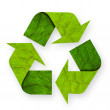 Recycle symbol leaf. — Stock Photo
