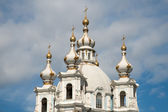 The domes of the Smolny Cathedral on the skyline. St. Petersburg — Stock Photo