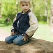 A little boy builds a sand castle. - Stock Photo