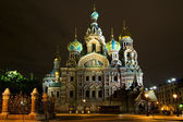 Church of the Savior on Blood. Night St. Petersburg. Russia — Stock Photo