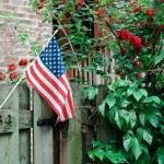 American Flag — Stock Photo #8242259
