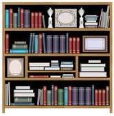 Vector bookcase — Stock Vector
