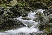Cascada río — Foto de Stock