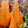 Stock Photo: Hoodoos in Bryce Canyon NP