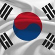 Flag of Korea — Stock Photo #8997374